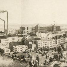 Geschichte des Levinschen Parks