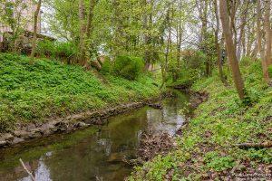 Bachlauf der Grone am Levinschen Park, Göttingen, Deutschland