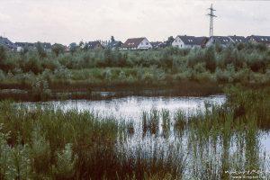 Rosdorfer Tonkuhle 1984